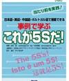 5s_jirei_1